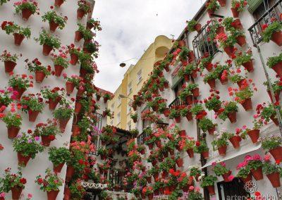 Patio Cordobés de la Calle Martín de Roa, 9