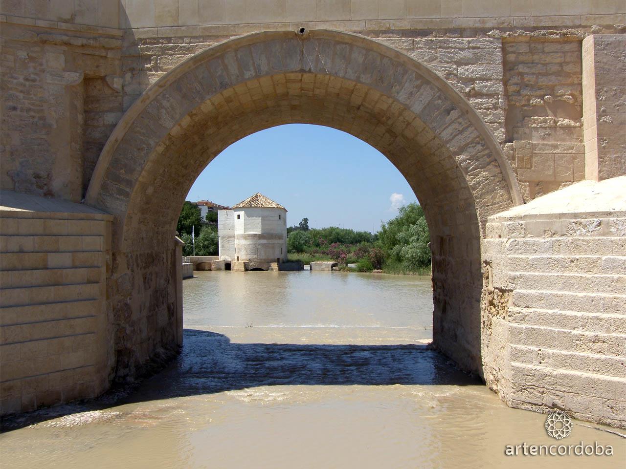 Detalle de uno de los arcos que sustentan el Puente Romano de Córdoba