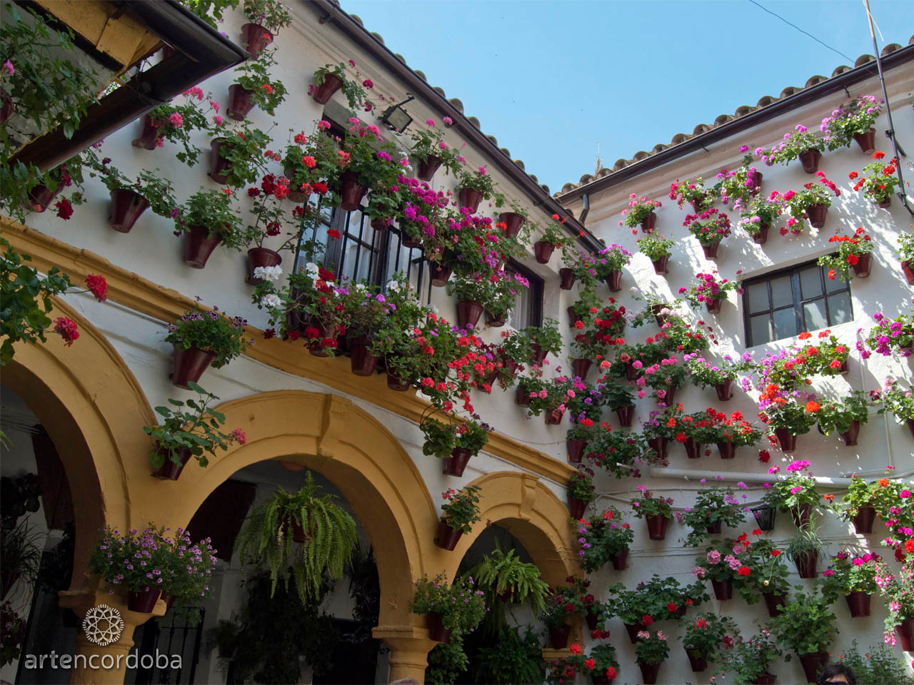 Guided Tour to the Popular Patios of Cordoba